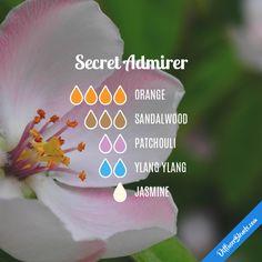 Secret Admirer - Essential Oil Diffuser Blend