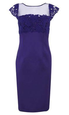 Coast shanice lace duchess dress