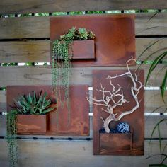 This is a beautiful display of succulents and rusted metal panels. Love it