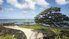 <meta content=' Accommodation Mauritius North Coast luxury self catering holiday rentals apartments villas Mont Choisy Grand ' name='description'/>