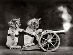 "Shorpy Historical Photo Archive :: The Kittens of War: 1914.  ""Cats in coveralls, posed as if firing a toy cannon."""