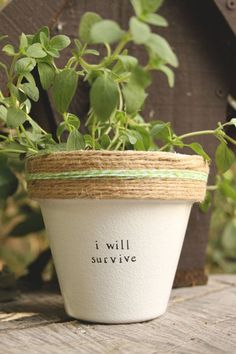 """I Will Survive! 4"""" and 6"""" pots available for your indoor herb or plant! Pot does not include plant. These hand painted and stamped pots are perfect for your indoor herb garden! All pots made by Plant Puns are sealed with an earth safe finish for safe growing and consumption of edible herbs. Pots contain a drainage hole. Is this a gift?! Send us a message and we'll be sure to include a special note from YOU free of charge! If you're looking for a set of herbs be sure to check out our…"""