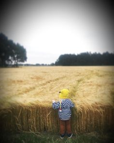 See this Instagram photo by @decor8 • 915 likes my little Pokemon in the wheat fields