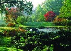 High Beeches Garden, High Beeches Lane, Handcross, West Sussex