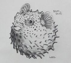 Balon balığı  Kurşun kalem 2B,6B,8B - Uçlu kalem 0,5mm 2B