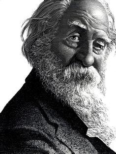 Author Walt Whitman by Mark Summers, the famous scratchboard illustrator. #portrait #scratchboard #bw