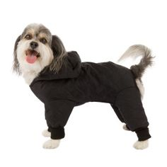 Pedigree Perfections Quilted Rain Suit - Clothing & Accessories - Dog - PetSmart
