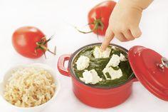 Baby-Friendly Palak Paneer - Baby Food Recipe