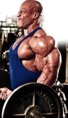 Phil Heath http://www.fitnessgeared.com/forum/forum/