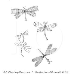 dragonfly border clipart - Google Search