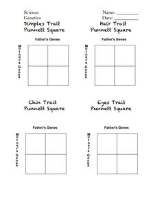 Worksheet Punnett Square Practice Worksheet to be disney and activities on pinterest celebrity punnett squares handout pdf