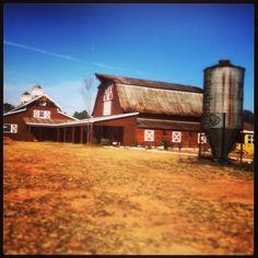 Located in Monroe, Ga #9oaksfarm