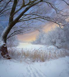 35PHOTO - Фото Брест - Зимние пейзажи.