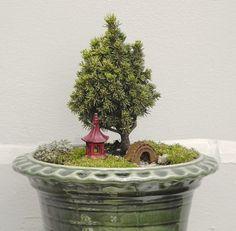 Miniature garden display at the Northwest Flower and Garden Show 2013. #GardeninginMiniature
