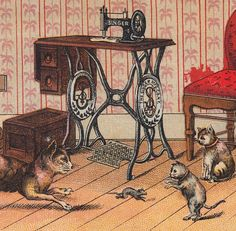 Singer Sewing Machine NY 1800's Cat Mouse Kitty Victorian Advertising Trade Card | eBay