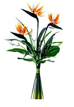 Tropical artificial bird of paradise and succulent floral table 49trp11 bird of paradise tropical bouquet 39 mightylinksfo