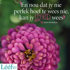 Afrikaans, Quotes, Quotations, Qoutes, Afrikaans Language, Manager Quotes