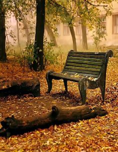 Sit and Think in Autumn. Even in to spring and summer.  Thinking does go with creating.