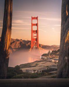 Golden Gate Bridge, California, Travel, Heart, Trips, The California, Traveling, Tourism, Outdoor Travel