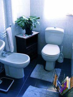 The bathroom scene