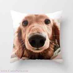 Dachshund custom pillow