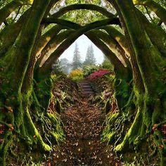 Secret Garden, Portland, Oregon !  Can't believe I have never heard of this beautifulness !!!