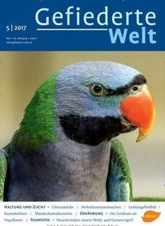 Haltung und Zucht: #Chinasittiche 🐦  Jetzt in Gefiederte Welt:  #Vögel #Vogelzucht #Sittich #Vogelhaltung