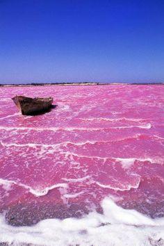 de paraguana con las aguas rosas in venezuela the water of las salinas ...
