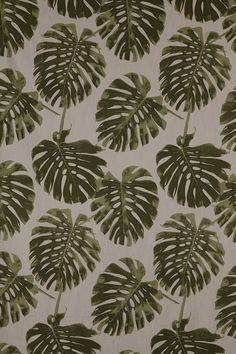 Delicious Monster in Olive - Lula Fabrics Home Decor Shops, Home Decor Items, Interior Design Studio, Pantone Color, Fabric Design, Plant Leaves, Tropical, Fabrics, Green