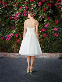 Moonlight Tango T772 short lace ball gown with illusion bateau back.