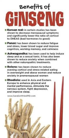 Health benefits of Korean Ginseng. #ginseng, #healthbenefits, #healthy, #energysupplement
