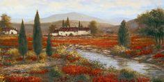 Tuscan red Poppies by Sambataro