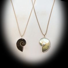 Reversible Ammonite Fossil Shell Pendant on Long Silver Snake Chain