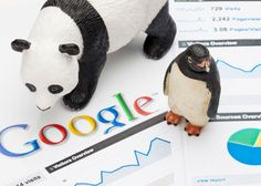 Has your website been pecked by Penguin or pawed by Panda? Here are a few tips on how to get your websites listings back on track. Google Penguin, Seo Techniques, Seo Sem, 242, Seo Strategy, Best Seo, Seo Company, Seo Tips, Shopping