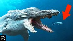 Sea Monsters Scarier Than Megalodon Scary Sea Creatures, Deep Sea Creatures, Fantasy Creatures, Mythical Creatures, Extinct Animals, Prehistoric Animals, Real Sea Monsters, River Monsters, Megaladon Shark