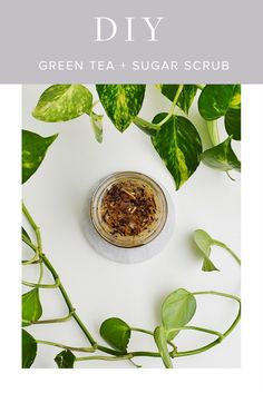 My DIY Green Tea + Sugar Scrub | Green Beauty | Green Beauty Products | Natural Beauty | Natural Beauty Products | Beauty Tips | Skincare Tips | Skincare |