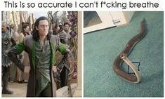 Pictures That'll Make You Laugh Every Single Time - 30 Marvel Funny, Loki Funny, Marvel Memes, Avengers Memes, Marvel Avengers, Marvel Dc Comics, Tom Hiddleston Funny, Danger Noodle, Fandoms