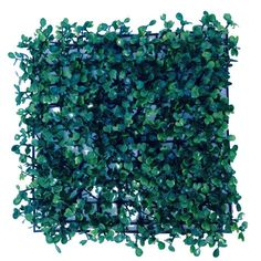 Grass wall mesh 10 pcs - Novillos Brand