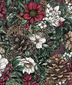 Zola x Maggie Enterrios Nature Illustration, Pattern Illustration, Floral Illustrations, Botanical Illustration, Digital Illustration, Aesthetic Iphone Wallpaper, Wallpaper Backgrounds, Wallpapers, Arte Alien
