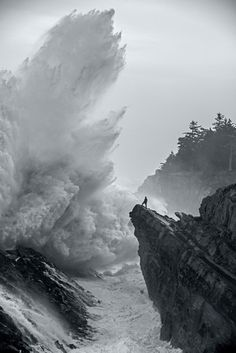 Fear Not by Larry Andreasen
