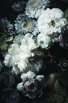 Share us for a 10% code for your order! Dark Floral Wallpaper