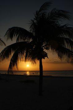 #atardecer #sunset #palm # sol #sun #holbox #México by Hugo Ortiz