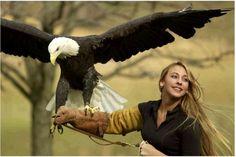 Our Beautiful World Seen Via Photos - American Bald Eagle