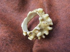 Shop for on Etsy, the place to express your creativity through the buying and selling of handmade and vintage goods. Antler Lamp, Deer Antler Ring, Deer Antlers, Antler Jewelry, Deer Skulls, Bone Carving, Ecru Color, Wood Work, Sheds