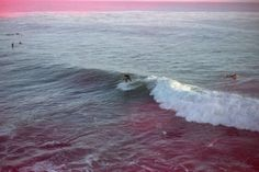 Urban Outfitters - Blog - Photo Diary: West Coast Surf