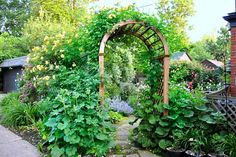 This garden entryway is so inviting. An 'Autumn Sunset' shrub rose scrambles up the entry arbor near, while leafy, self-sowing hollyhocks grow at its base.