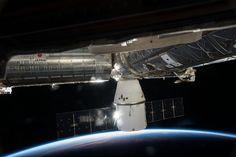 SpaceX's Dragon cargo capsule