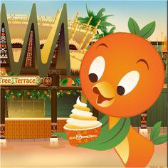 Orange bird!!