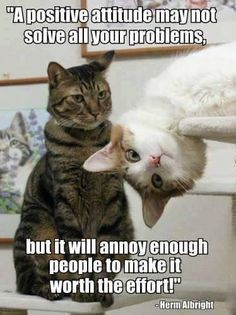 How to annoy....
