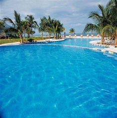 Old Bahama Bay Resort is a great place to get away from it all. Find out why it's one of our Featured luxury resorts. Bahamas Resorts, Bahamas Vacation, Vacation Destinations, Vacation Trips, Vacations, Shark Diving, Travel Deals, Great Places, Island